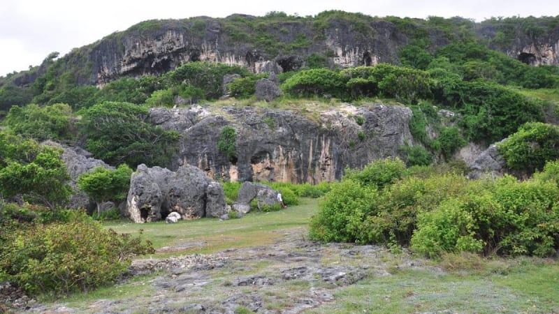 Arkeolog Australia Temukan Lukisan Prasejarah di Gua Maluku
